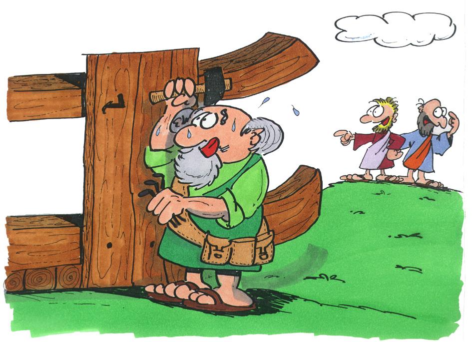 Noah baut